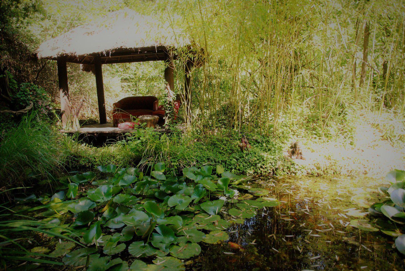 """Le jardin """" Les Bambous du Mandarin """" Balades d'ici et d'ailleurs"""""""
