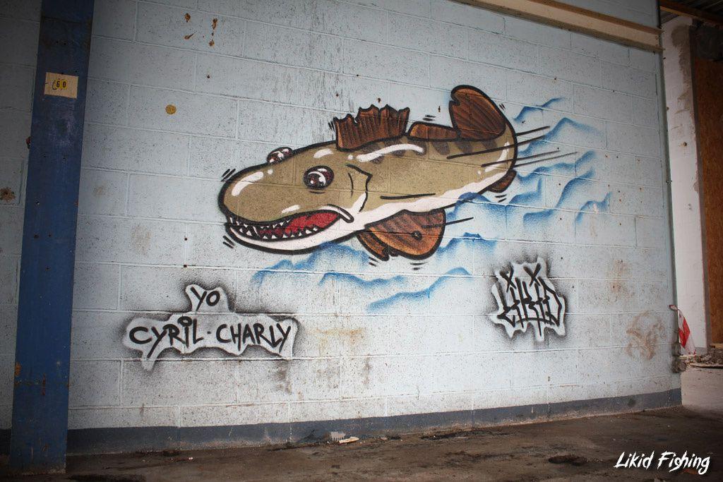 Graffiti & Fishing