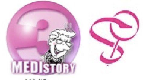 Samedi 13 Mai  2017 à DINAN  :Rencontre  avec le logiciel MédiStory 3  en préparant MédiStory 4