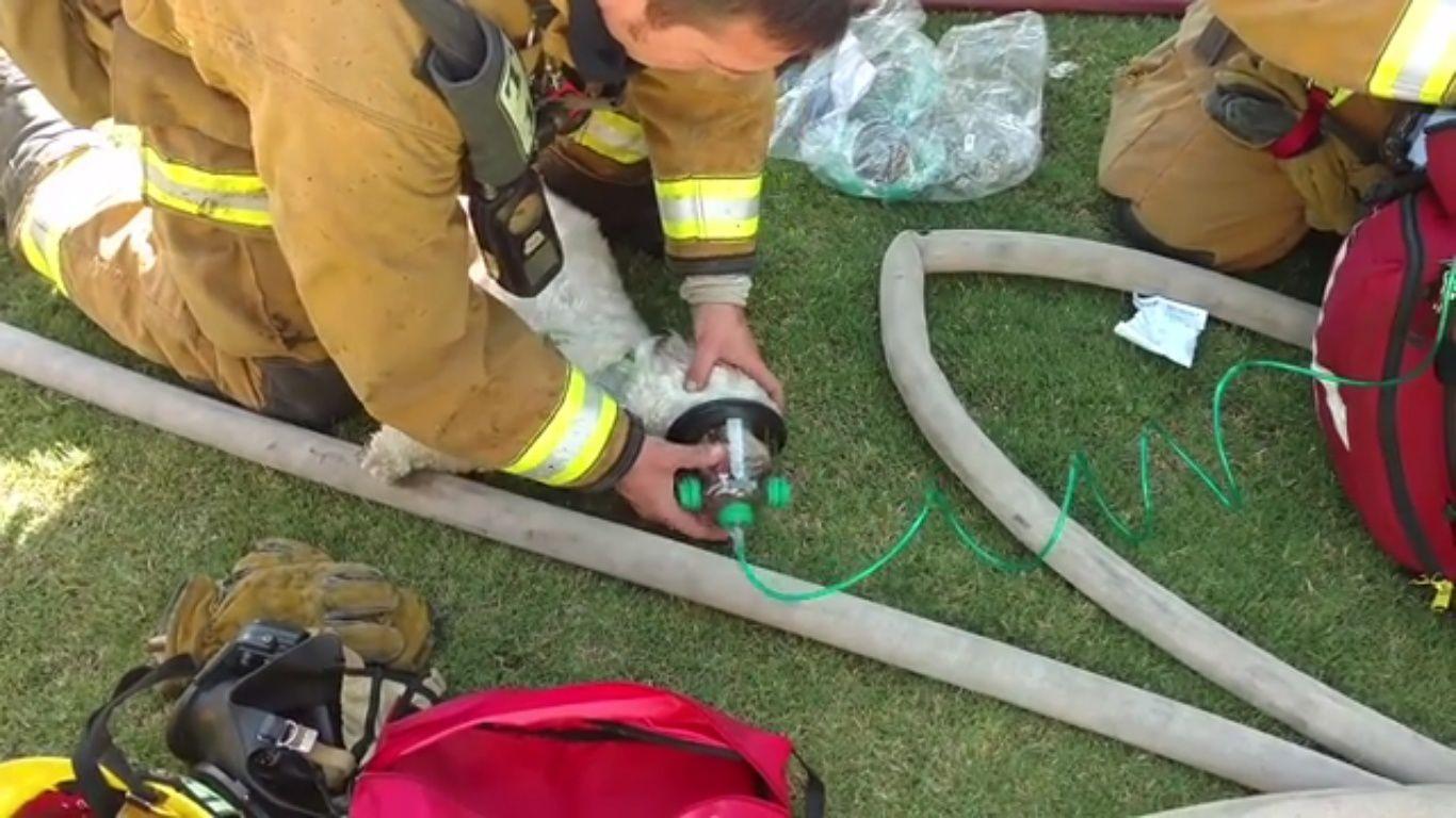 Les Sapeurs-Pompiers de Bakersfield en Californie