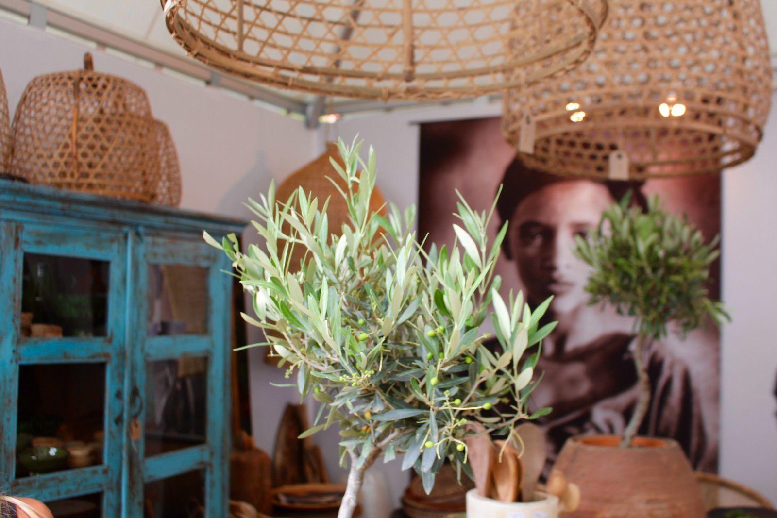 Salon vivre côté sud - Décoration, Jardin, Saveurs