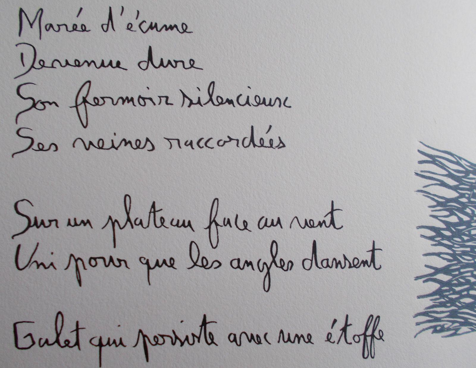 """""""Le Vent sur la pierre"""", livre d'artiste ( Régis Roux/ Cécile Combaz); 2017"""