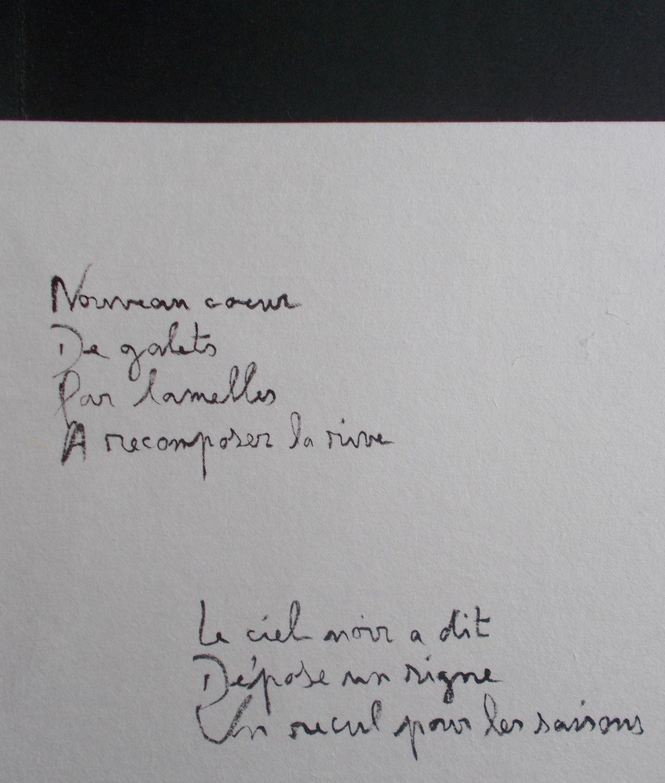 """""""LA CARTE PROFONDE"""", livre d'artiste. Poèmes et photos: Régis Roux/ Calligraphies japonaises: Yukako Matsui: 2017."""