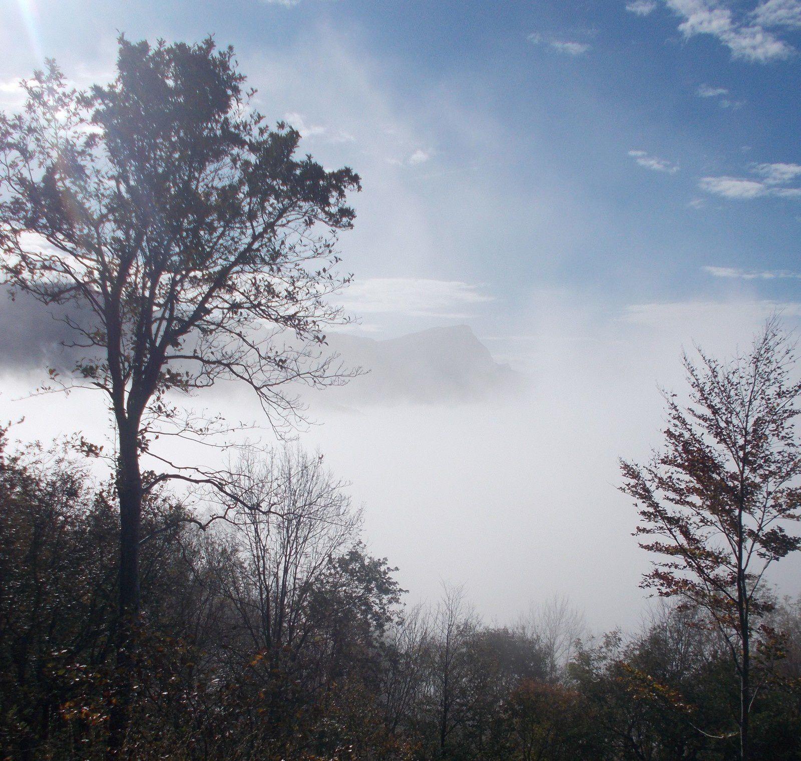 Photos prises par Régis Roux le 30 octobre 2019 dans les Monts du matin ( Vercors; Drôme.)