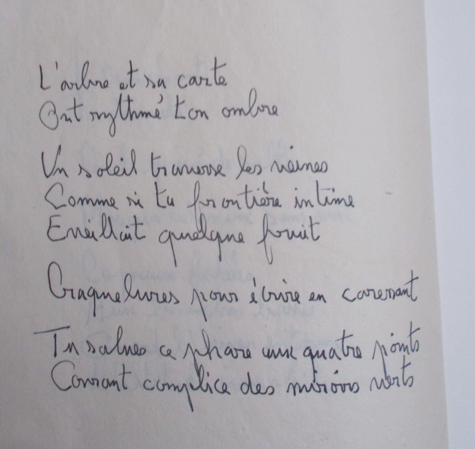 """"""" INTIME CARTE AVEC L'ARBRE """", livre d'artiste ( Roux/ Godon-Pirof; 2019.)"""