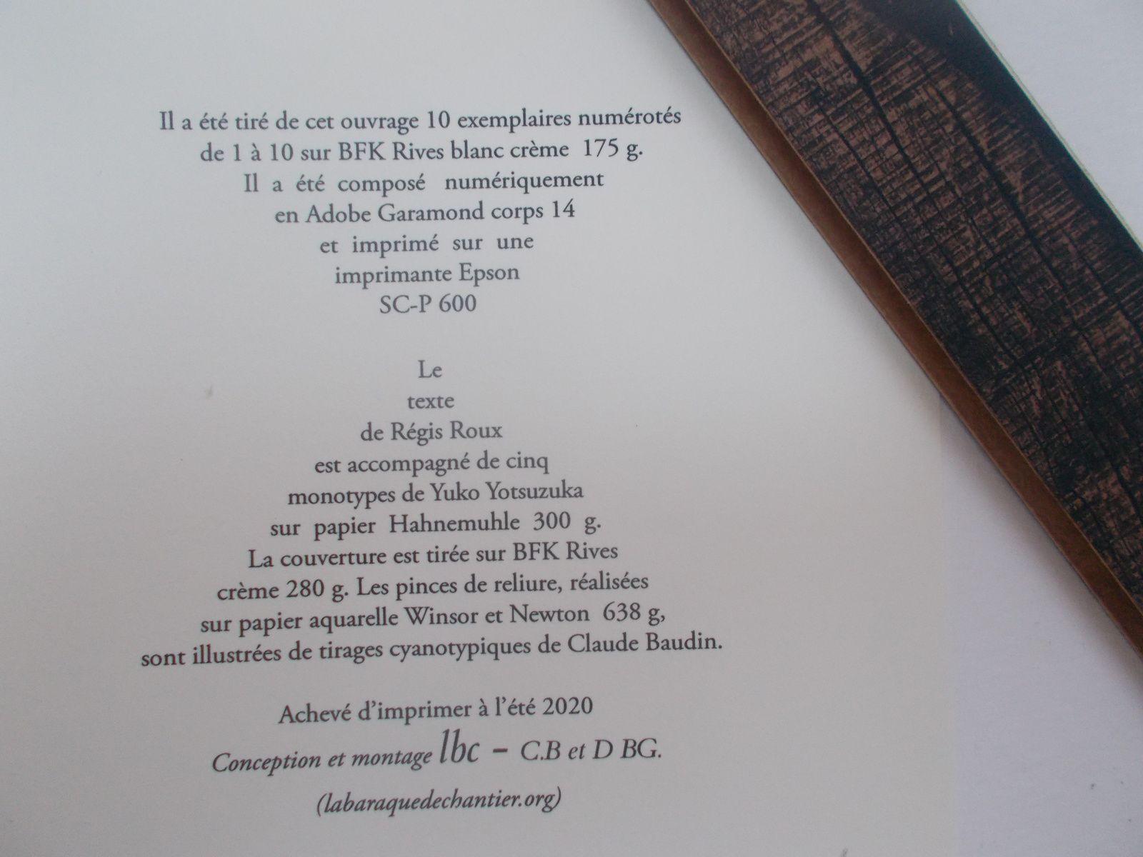 """"""" Du Soir aux Monts du Matin"""" ( La Barraque de chantier, été 2020).  Présentation du livre"""