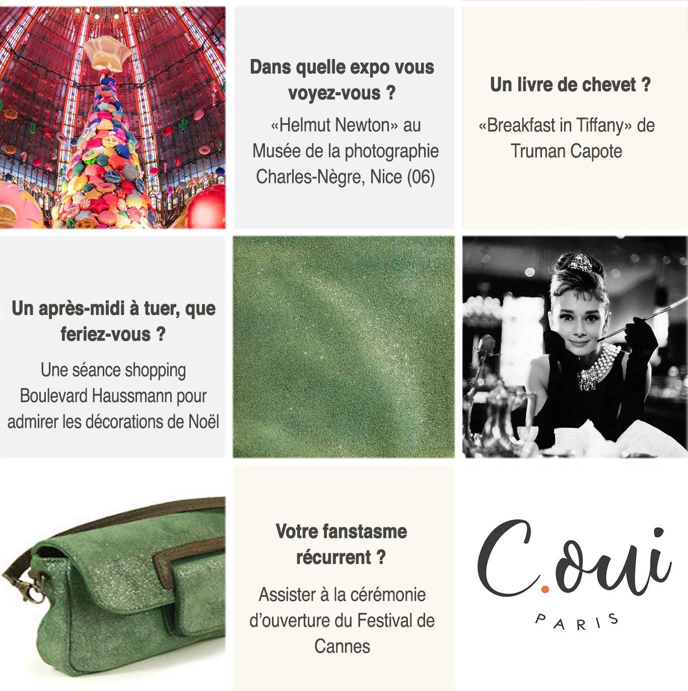 Confessions d'un sac : Cannes