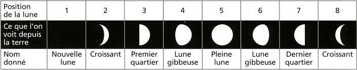 Sciences: Séquence: Les différentes phases de la Lune