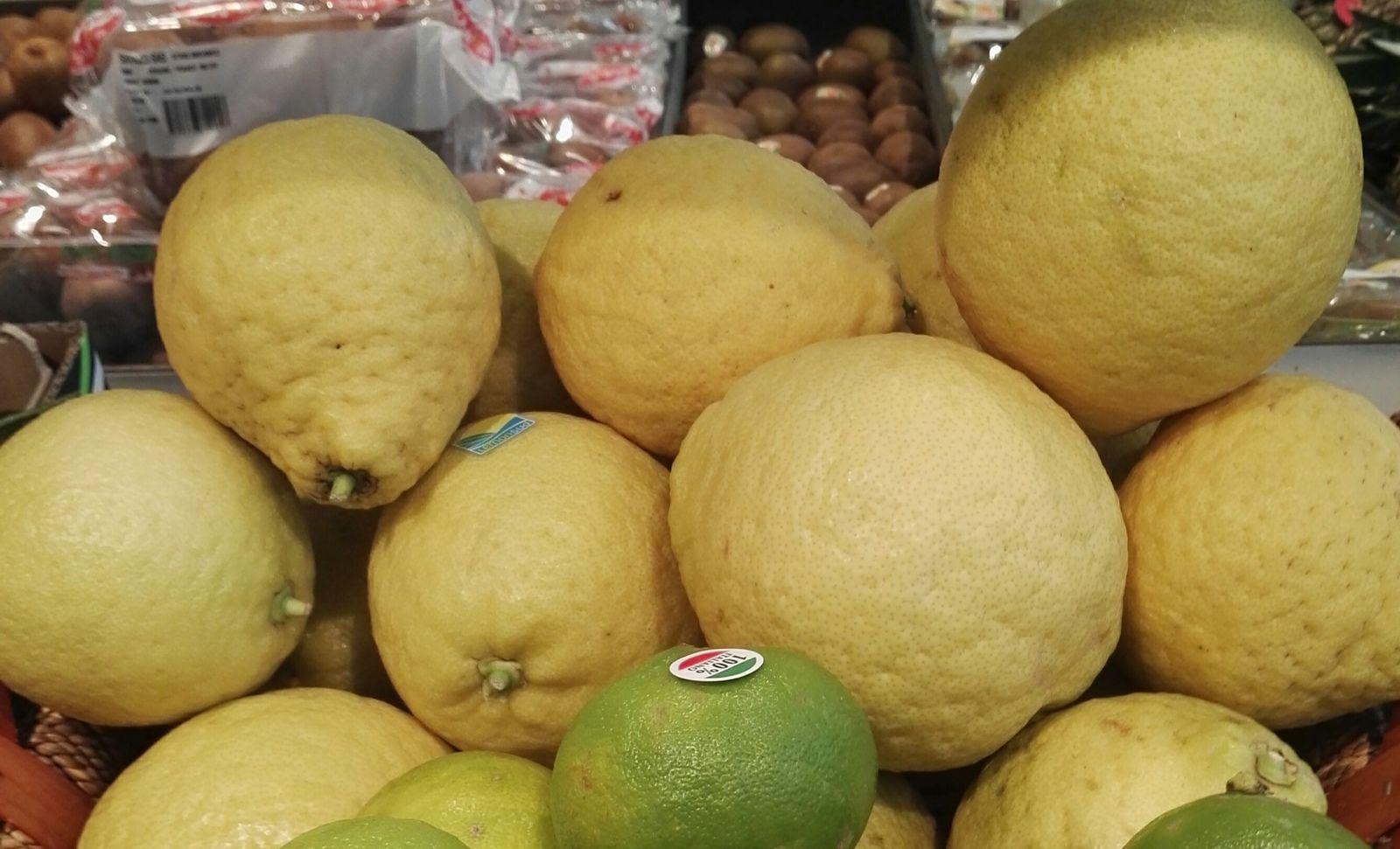 Le cédrat, Citrus medica,