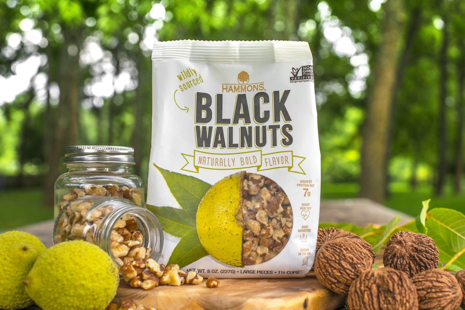 Black Walnuts - Hammons Products Company (noix noire) I Design : Revel Advertising, Springfield, Etats-Unis  (octobre 2018)