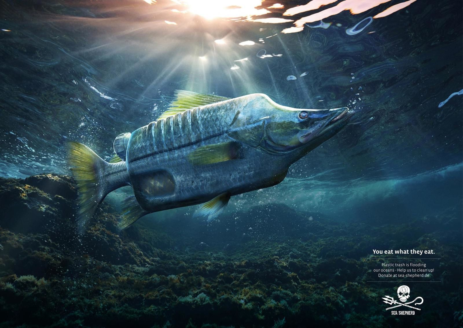 "Sea Shepherd : ""You eat what they eat. Plastic trash is flooding our oceans - Help us to clean up! "" I Agence : Ogilvy, Francfort , Allemagne (octobre 2018)"