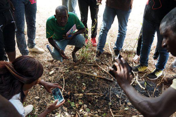 Sur les lieux du crime... nous trouvons les restes d'une colonie brûlée par des récolteurs traditionnels. Heureusement les experts Kedougou sont là
