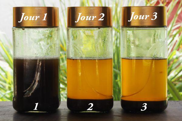 Voici 3 échantillons issus d'un kg de graine chacun et pressé 3 jours à la suite. Vous constatez que l'huile noire sortie de la presse se clarifie très rapidement.