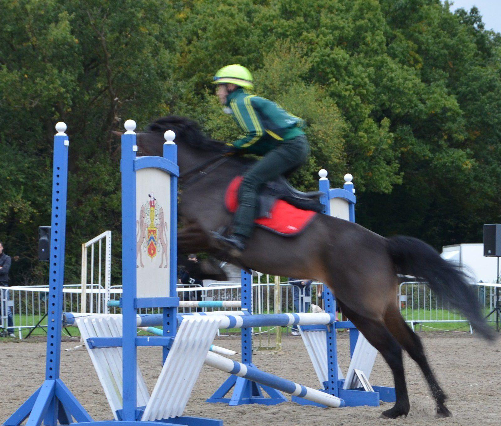 Fête du cheval à Lamorlaye le dimanche 12 octobre à partir de 14h