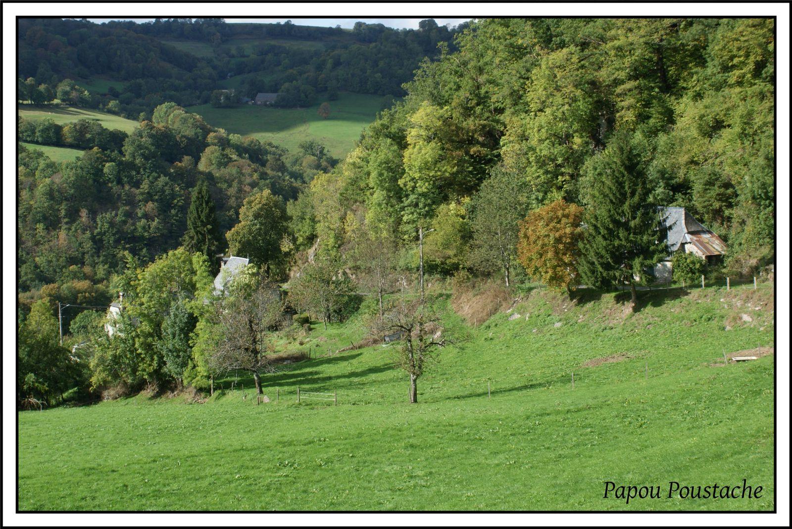 Paysage du Cantal:Le tour du Canrou