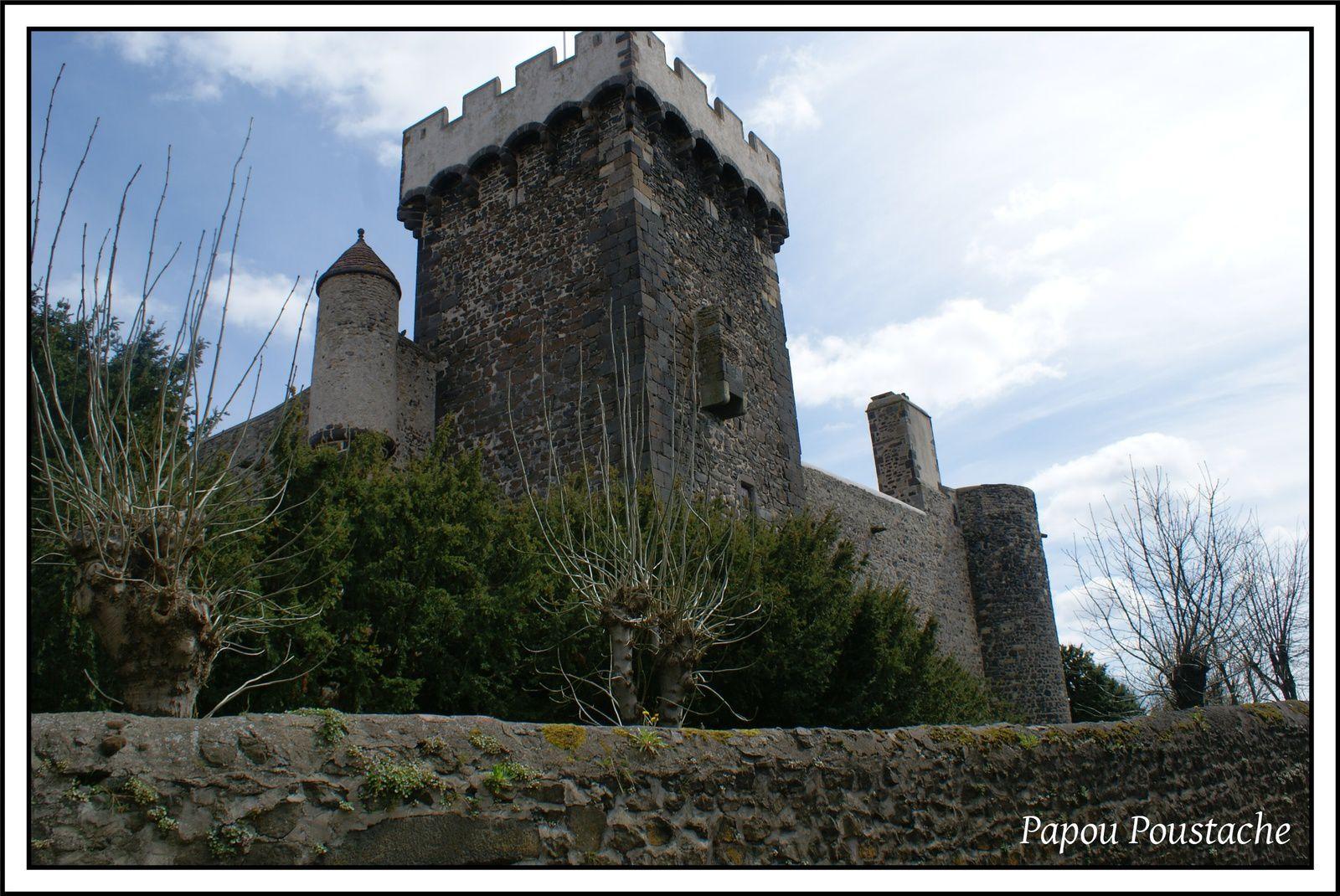 Patrimoine auvergnat:Le château d'Opme