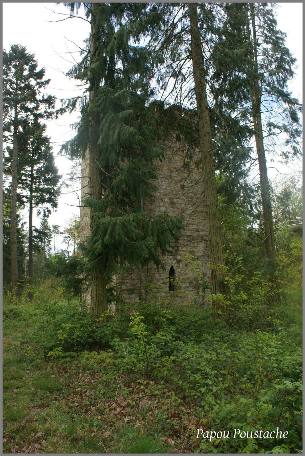 Insolite :Une tour perdue dans une forêt à St Jean D'Heurs
