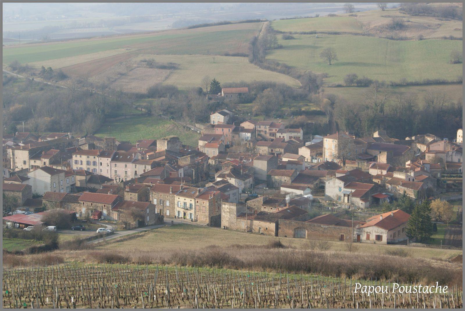 Les vins d'Auvergne:  Boudes