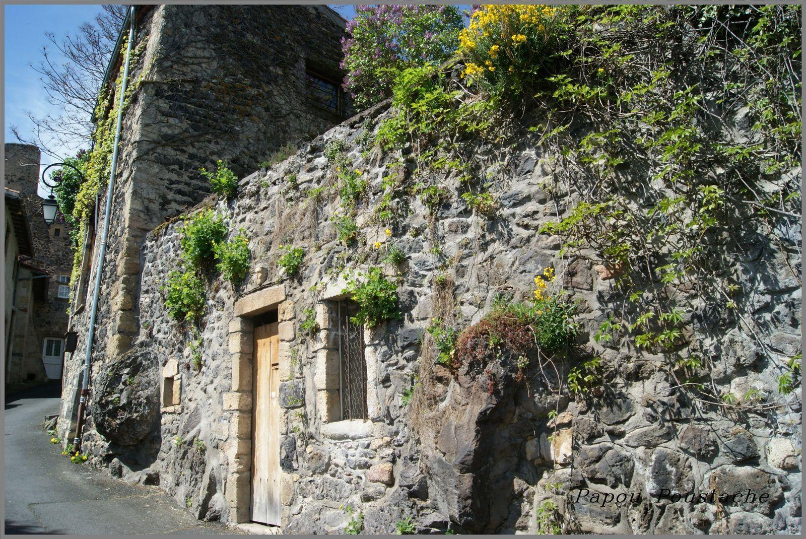 Randonnée à Saint Amant Tallende