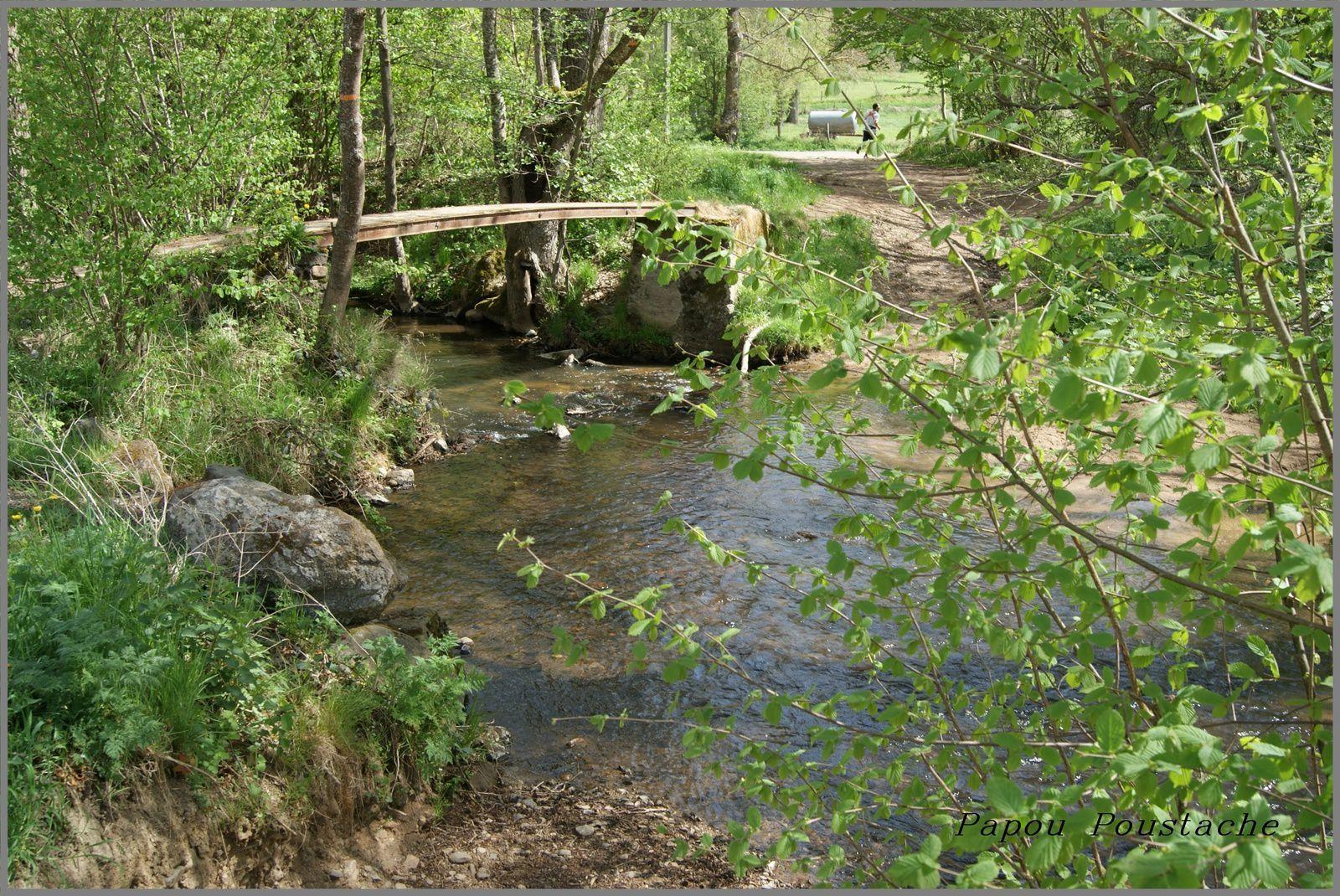 Les rivières d'Auvergne:La Monne