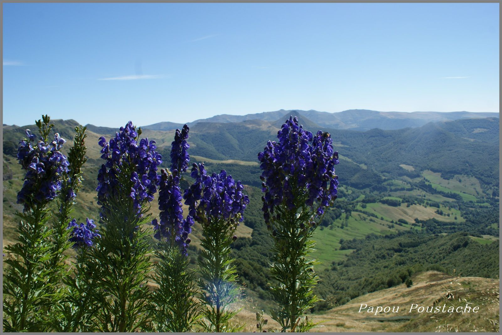 Le Puy Mary 2015