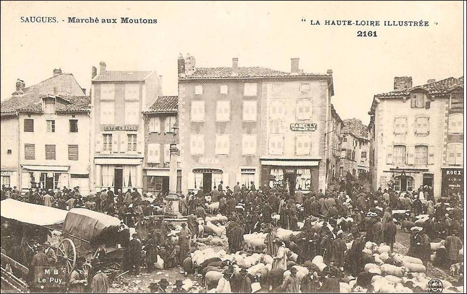 Les villages de Haute-Loire: Saugues
