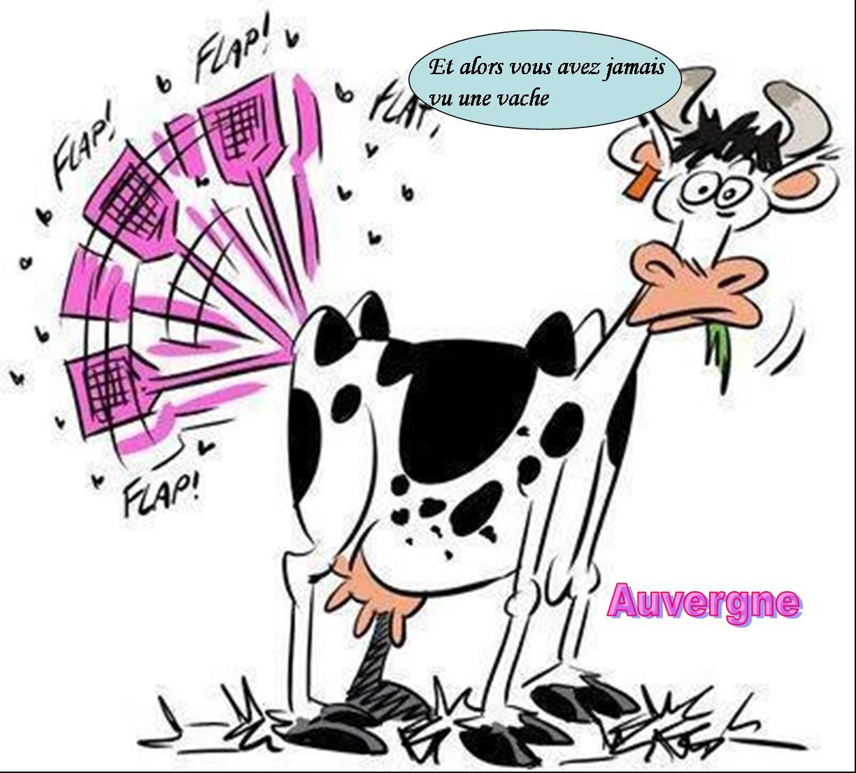 Recueil de quelques blagues auvergnates l 39 auvergne vue par papou poustache - Photo de vache drole ...