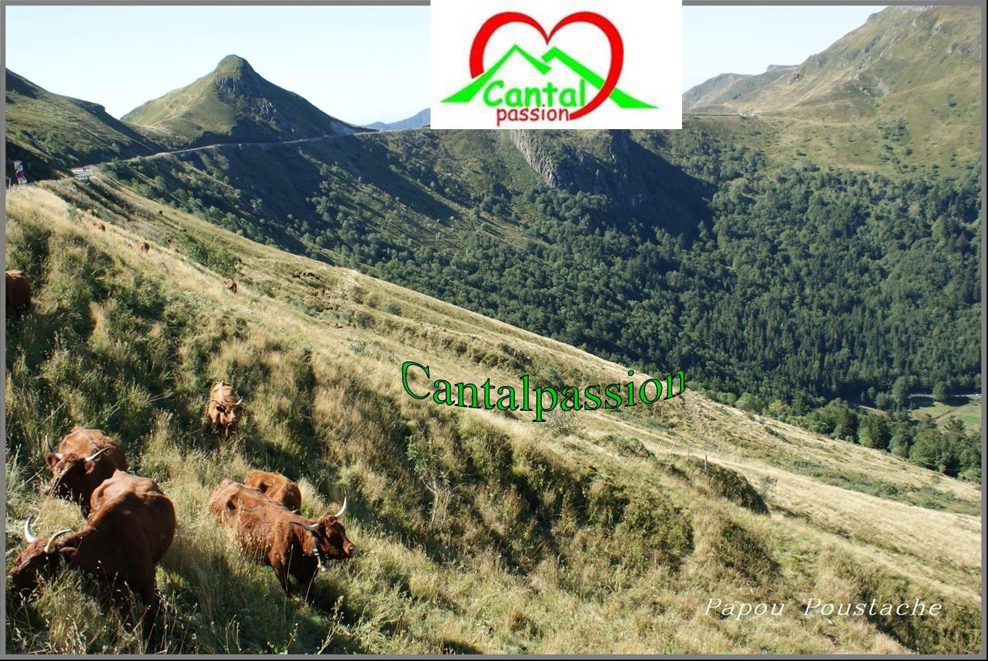 Le site de Cantalpassion