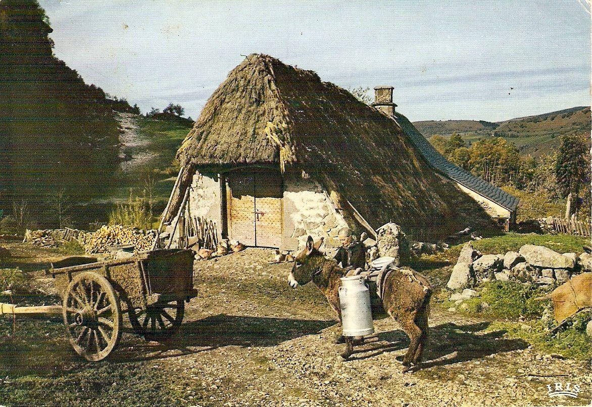 L'Auvergne à la campagne c'était ça