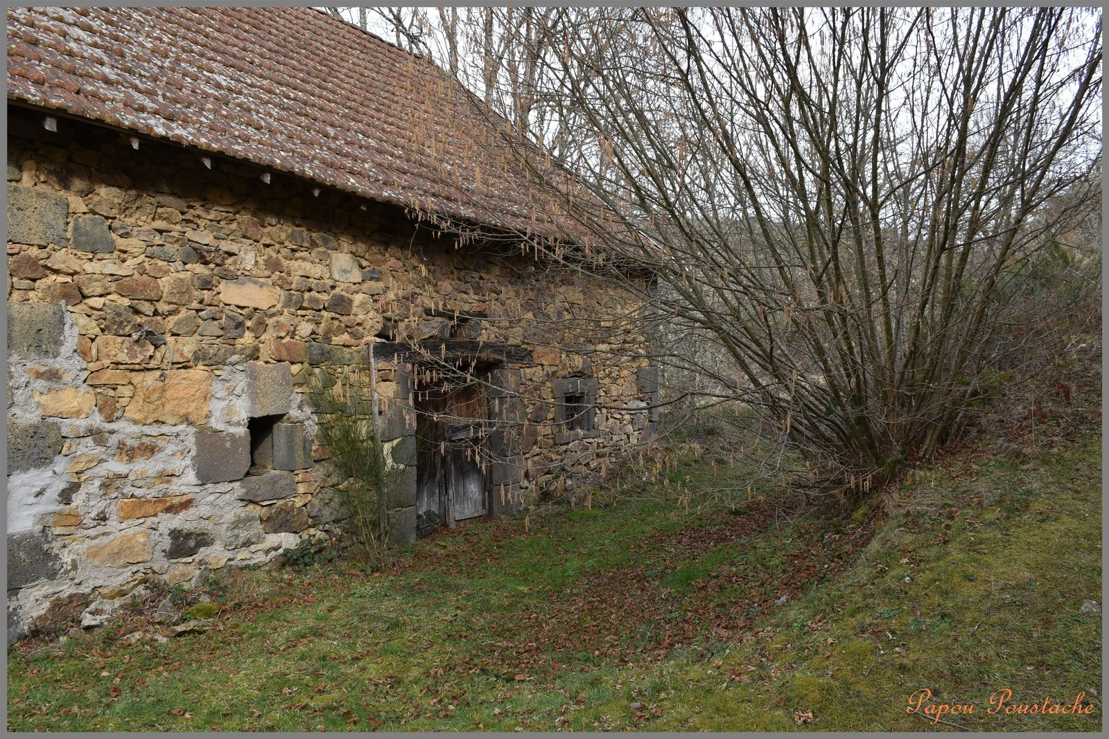 Montfermy