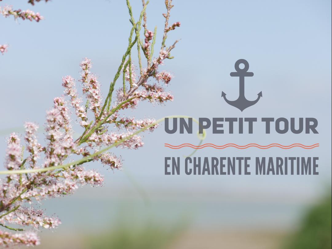🌊 Calme et sérénité en Charente Maritime