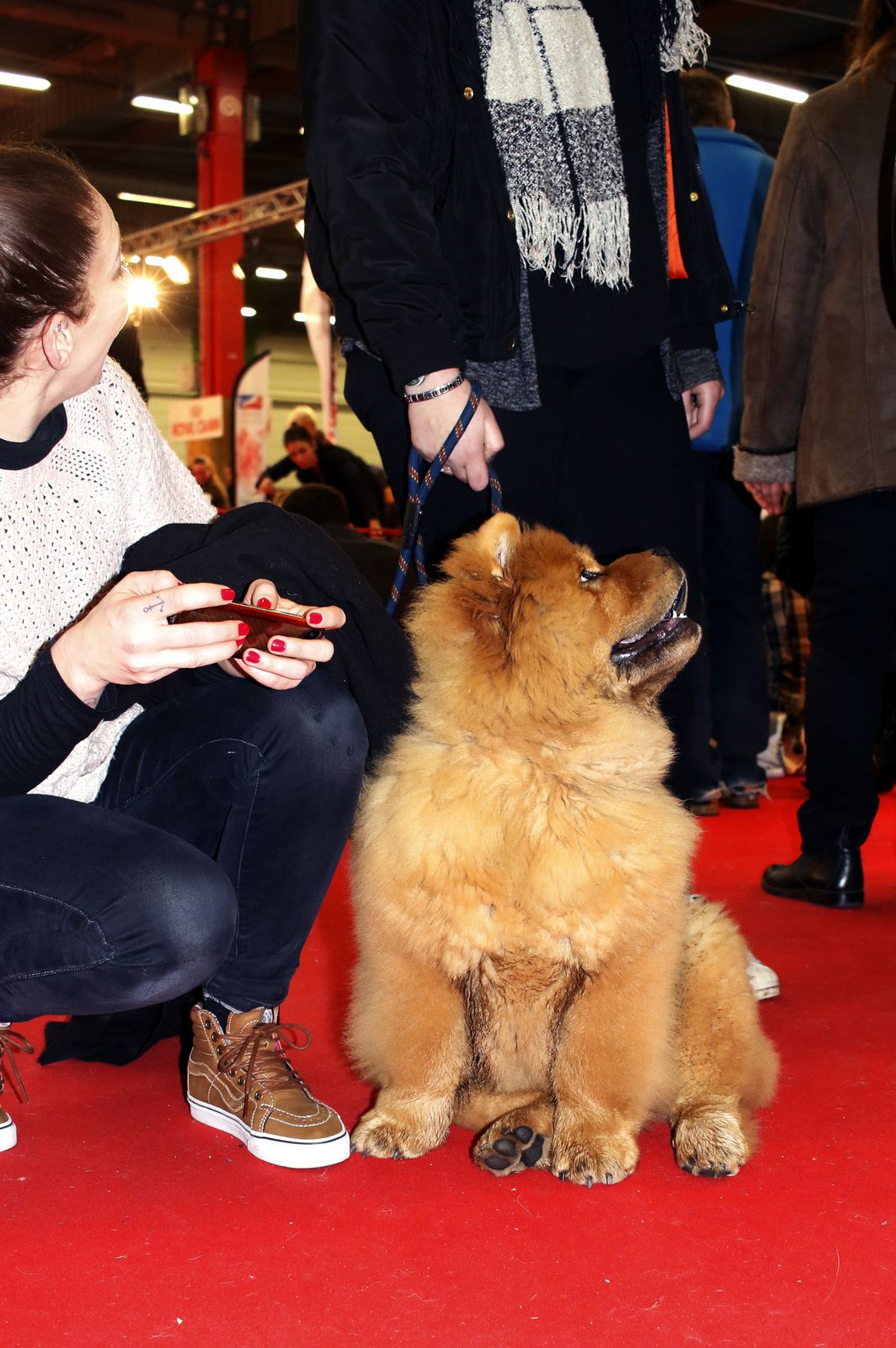 Paris Dog Show 2017