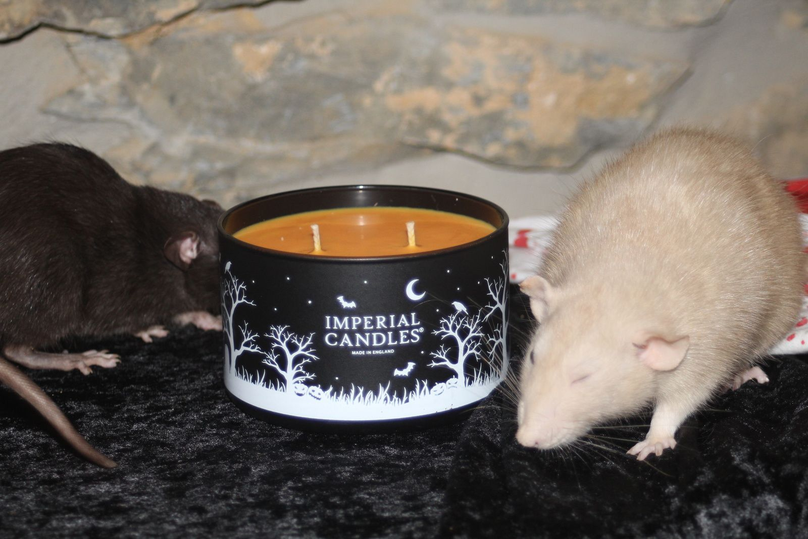 Halloween Bundle - Imperial Candles