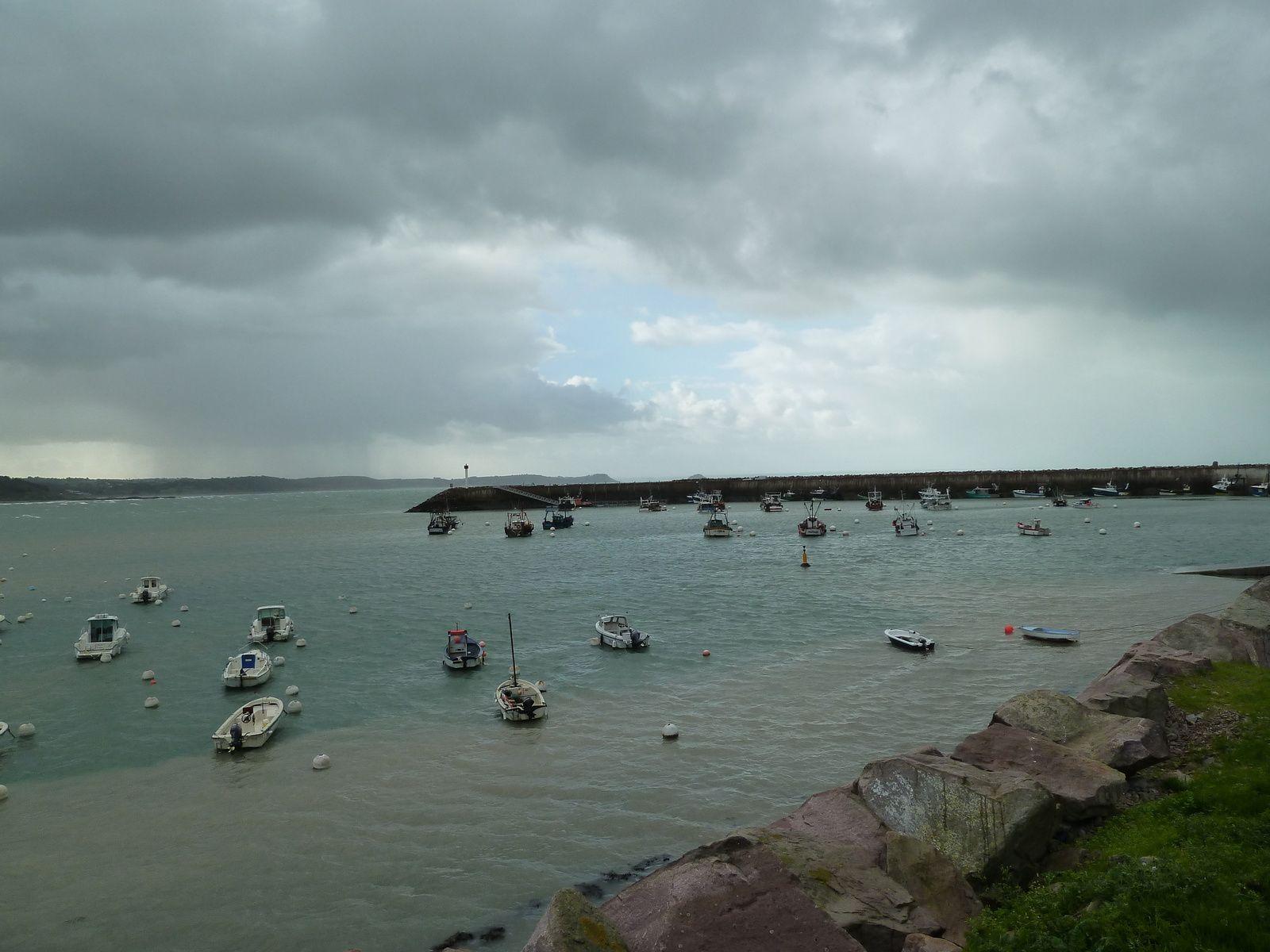 """La baie du port d'Erquy """"capitale"""" de la coquille Saint Jacques."""
