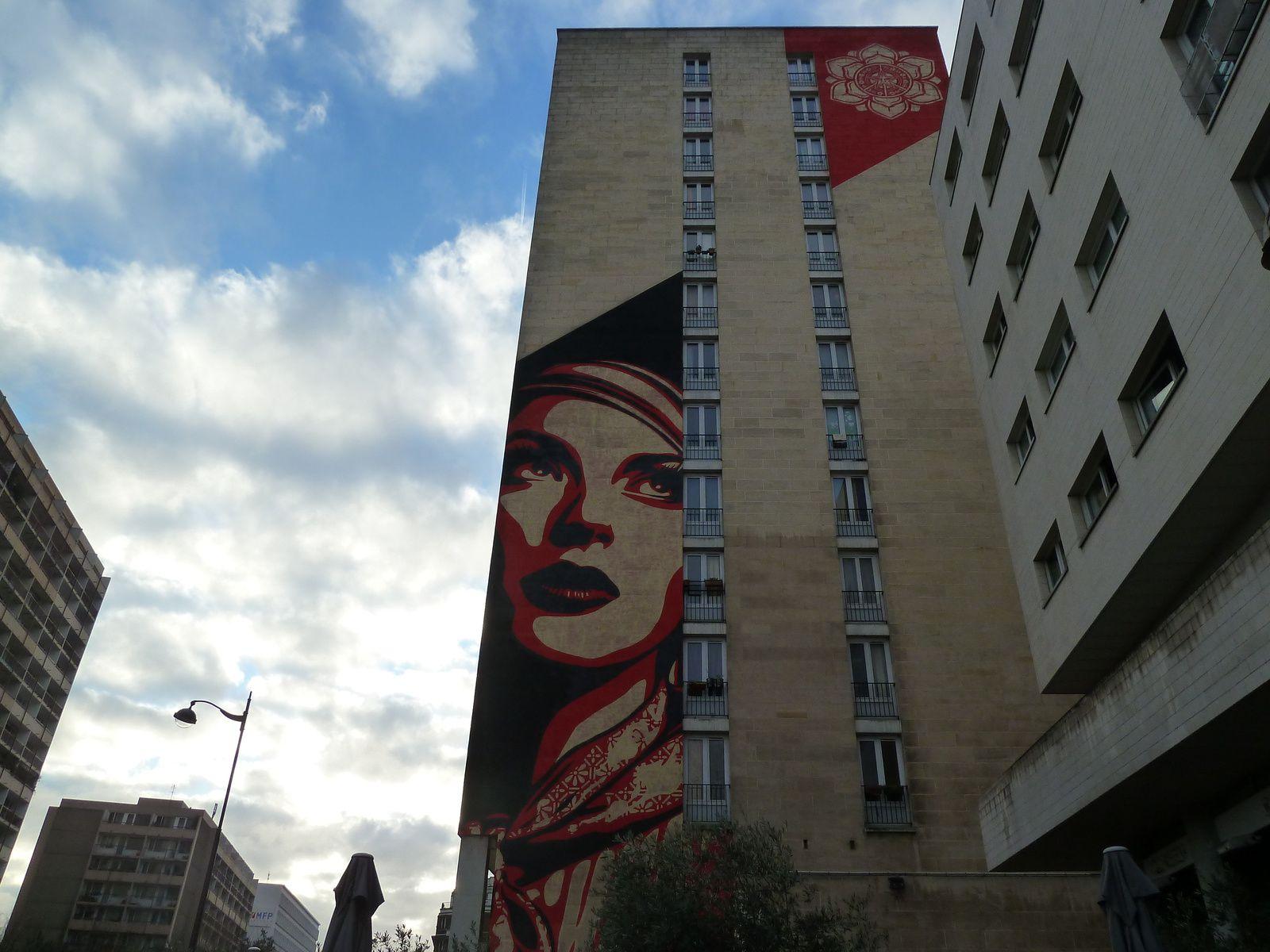 Œuvre de l'artiste américain Shepard Fairey aka Obey. Il s'agit d'un immenseportrait de femme, doublé d'une grosse fleur, symbole de paix, qui ornent un mur à l'angle de la rue Jeanne d'Arc et du boulevard Vincent Auriol depuis juin 2012.