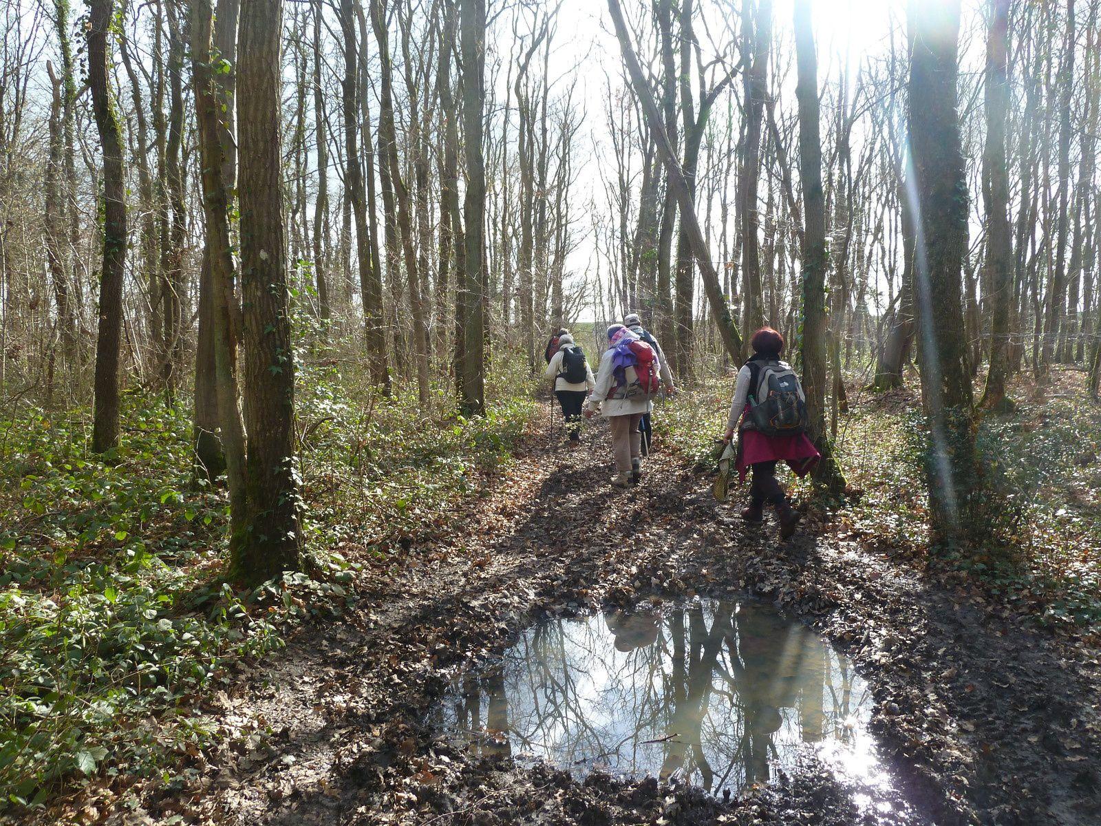 L'avancée est difficile le sentier est noyé d'eau, la boue colle aux pieds, nous devons marcher sur le côté en nous agrippant parfois aux arbres pour ne pas perdre l'équilibre...