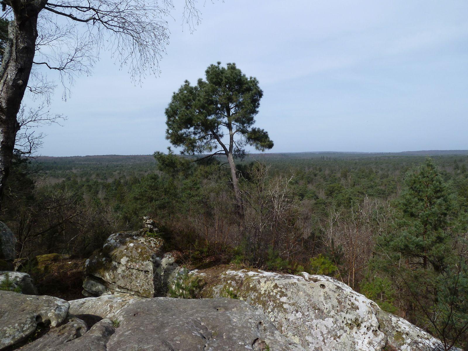 Nous nous arrêtons quelques minutes pour admirer le joli point de vue sur le domaine forestier tout près de la grotte.