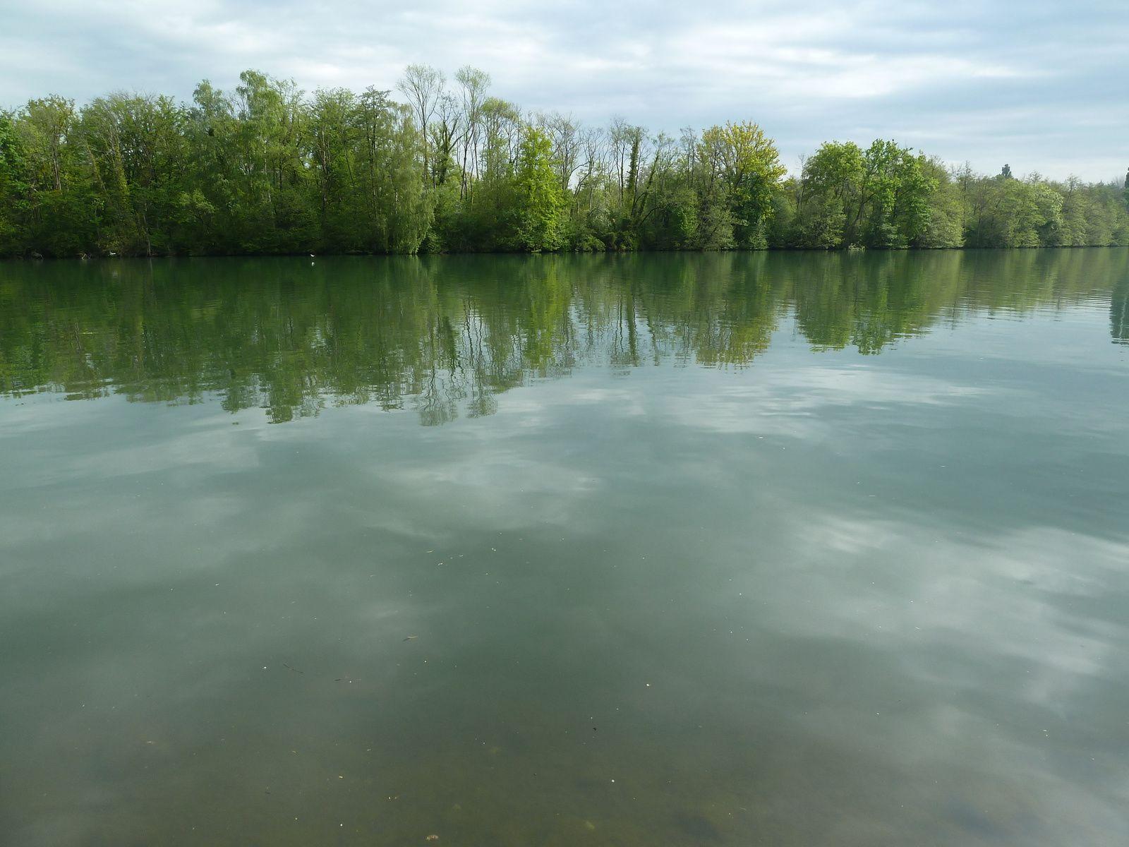 Nous stoppons quelques minutes sur le bord de la Seine pour admirer le paysage cher à Sisley peintre britannique du mouvement impressionniste (30 octobre 1839 à Paris - 29 janvier 1899 à Moret-sur-Loing).