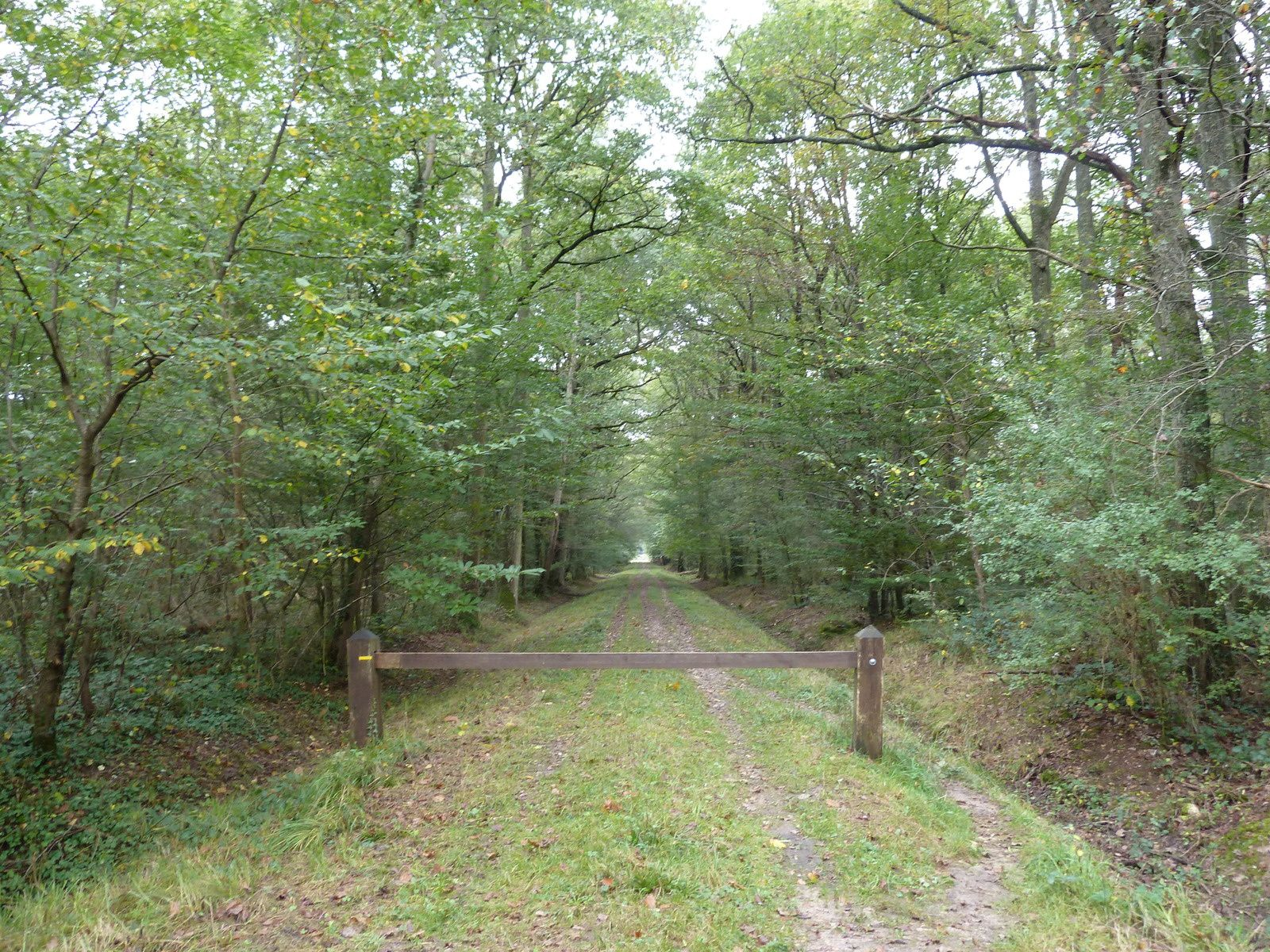 Par le PR, nous reprenons le Chemin de l'Epinard et la Route de Graville à l'Epinard.