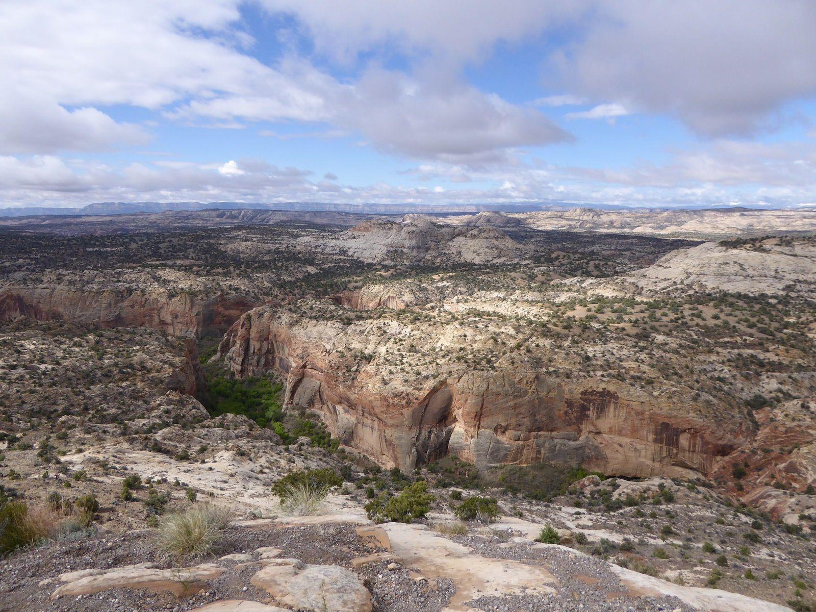 Ouest-Américain, Bryce Canyon - Printemps 2016.