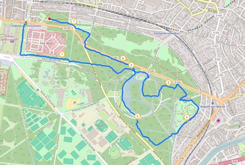 Marche nordique au bois de Vincennes. 7,5 km