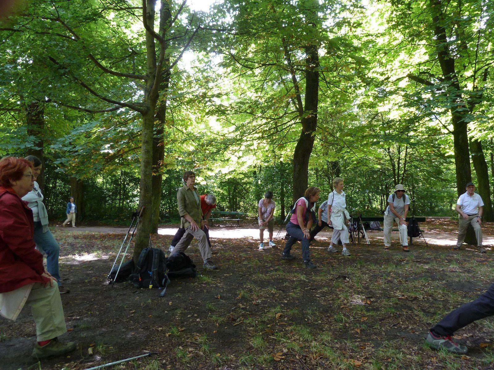 Marche Nordique au Bois de Vincennes - 7,3 km.