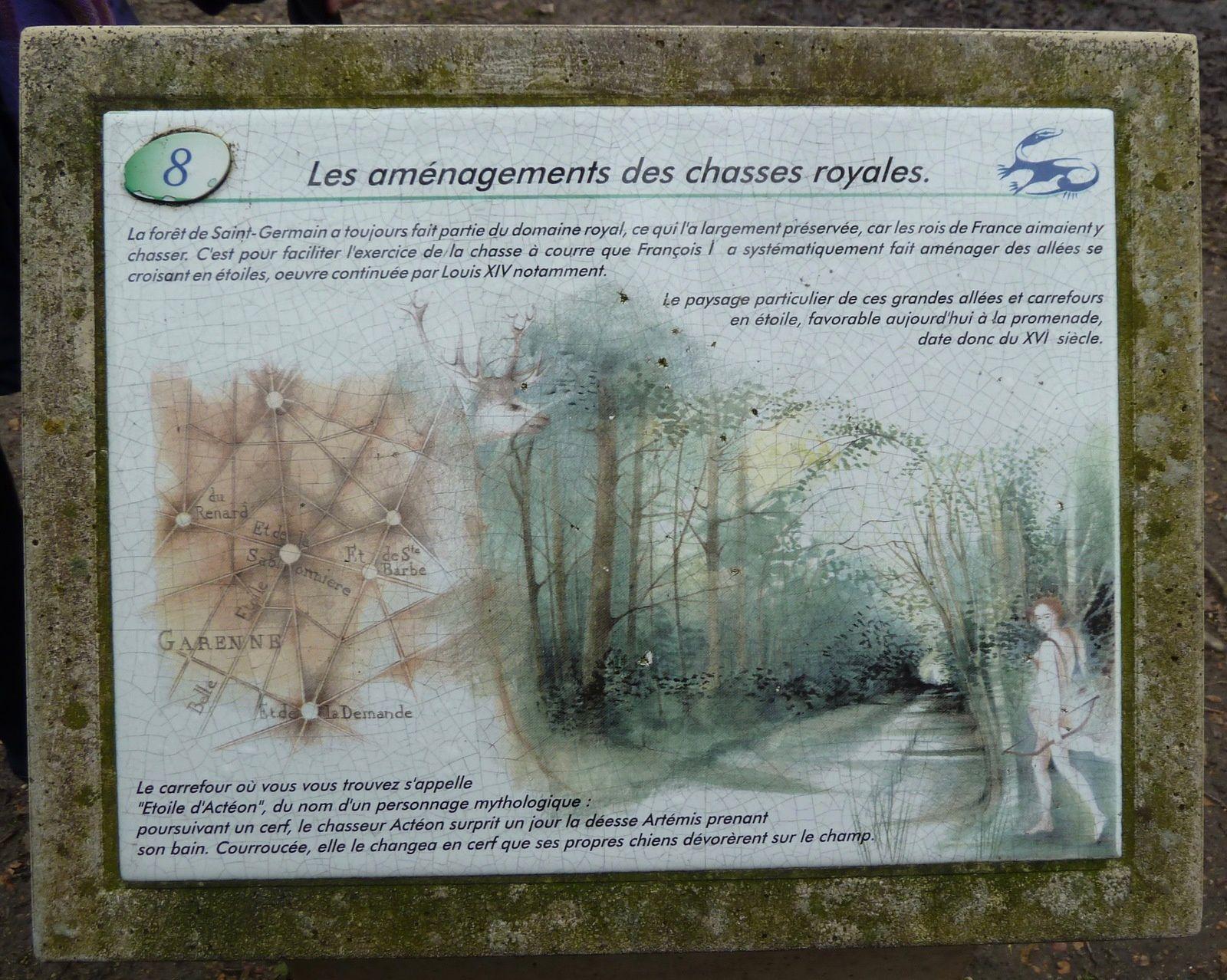 Randonnée de Saint-Germain-en-Laye à Poissy - 10 km.