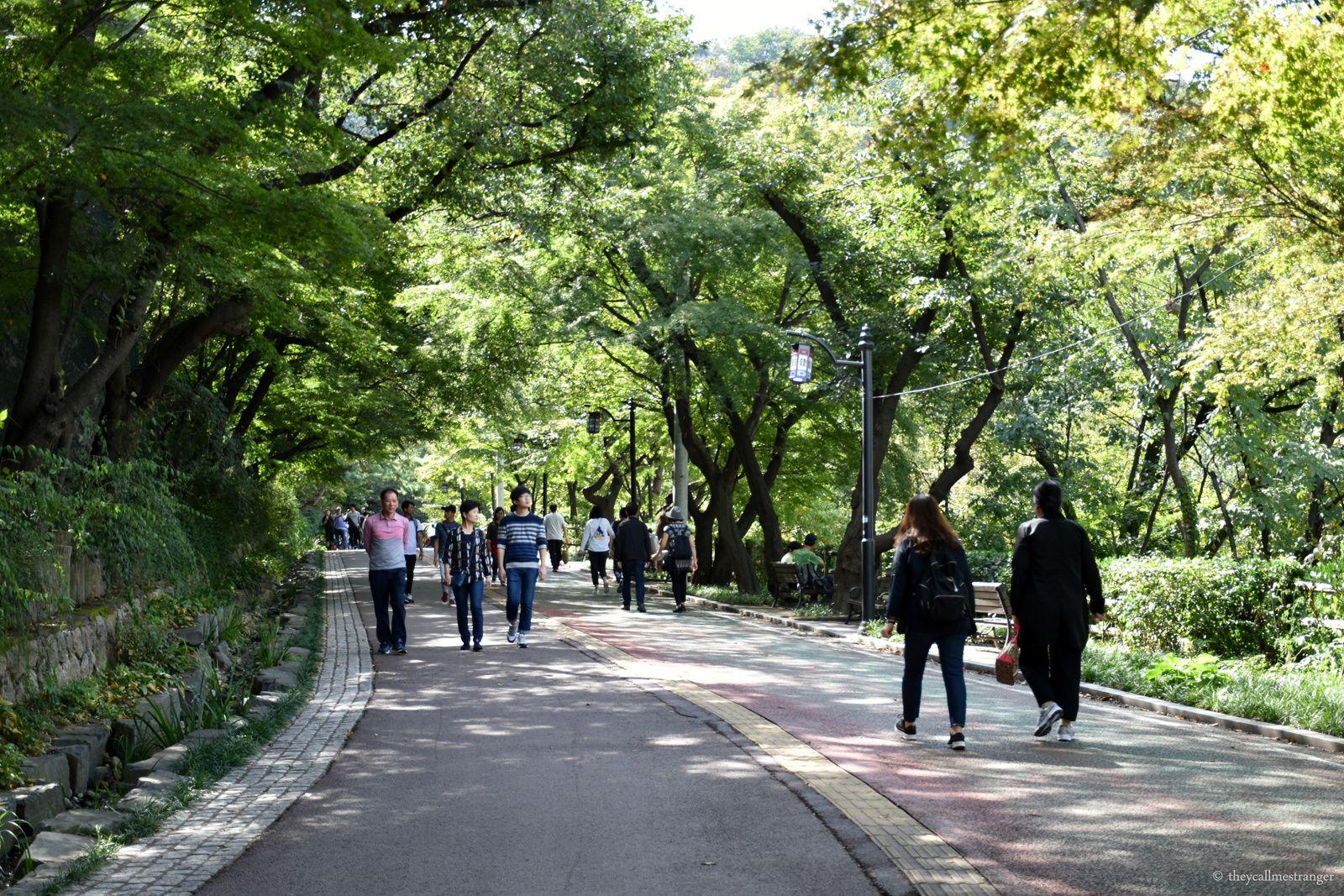 Le parc Namsan et la Seoul Tower