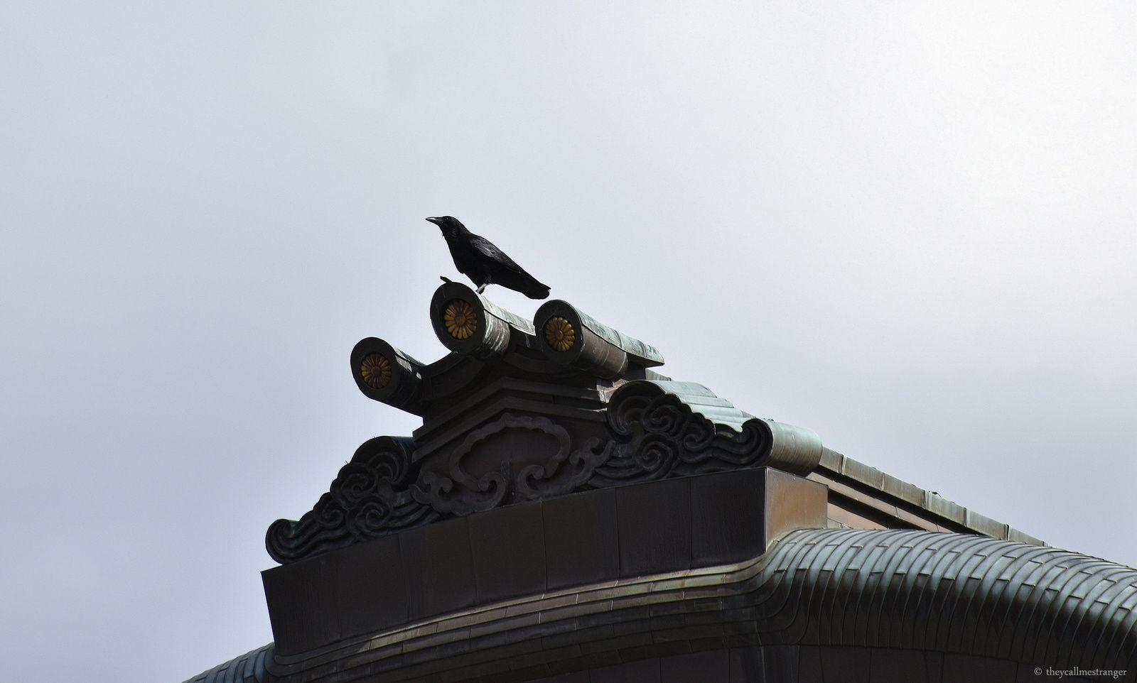 Nijō-jō : le château de Nijo, Kyoto