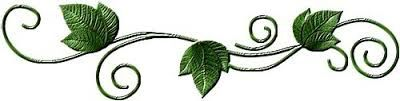 Velouté épinards, courgettes et mascarpone