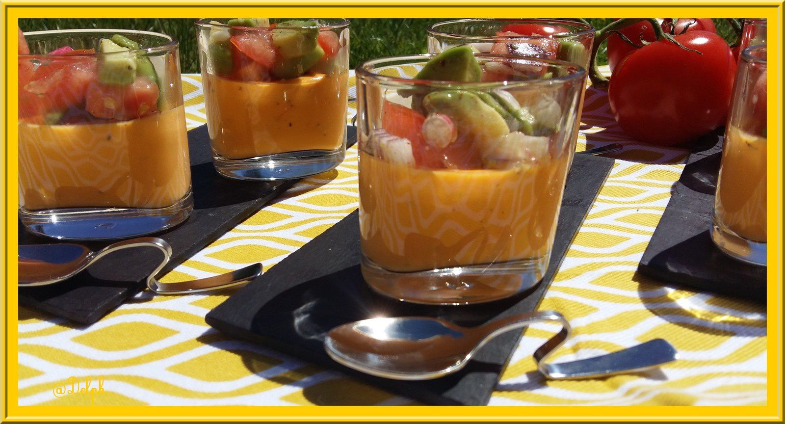 Panna cotta de tomate et sa salade au thermomix blogs de for Espace cuisine thermomix