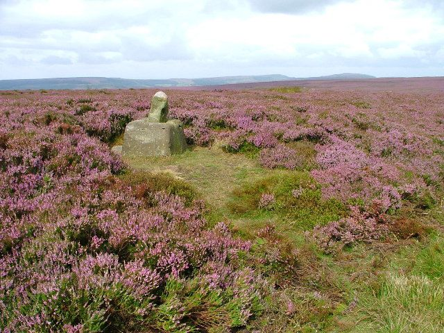 Paysage de moors du Yorkshire, telles que les aimait Emily Brontë.  https://fr.wikipedia.org/wiki/Emily_Bront%C3%AB