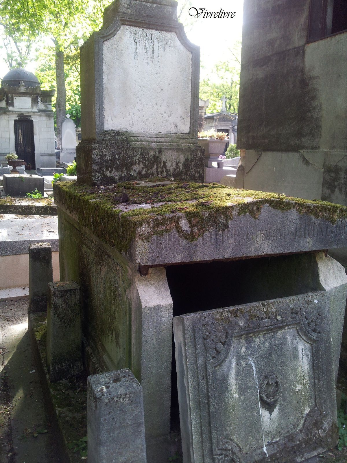 Une tombe abandonnée au Cimetière de Montmartre (Photographie personnelle)