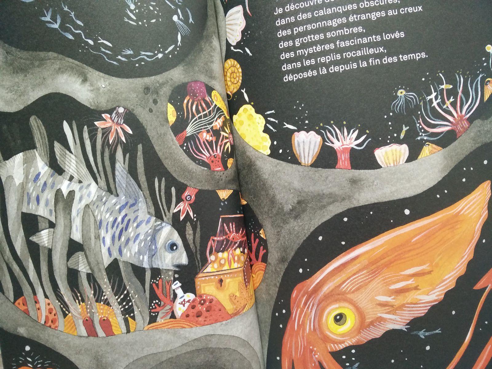 Nuit.  Nancy GUILBERT et Anna GRIOT – 2020 (Dès 6 ans)
